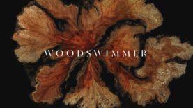 WoodSwimmer ( Bedtimes Music Video )